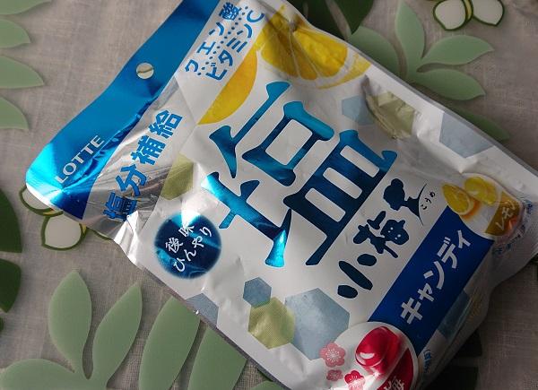 塩小梅 塩&レモン